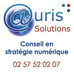 auris solutions